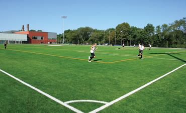 Motamed Field